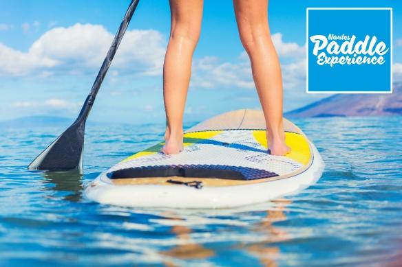 Paddle Board Nantes